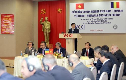Vietnam, Romania strengthen economic ties hinh anh 1