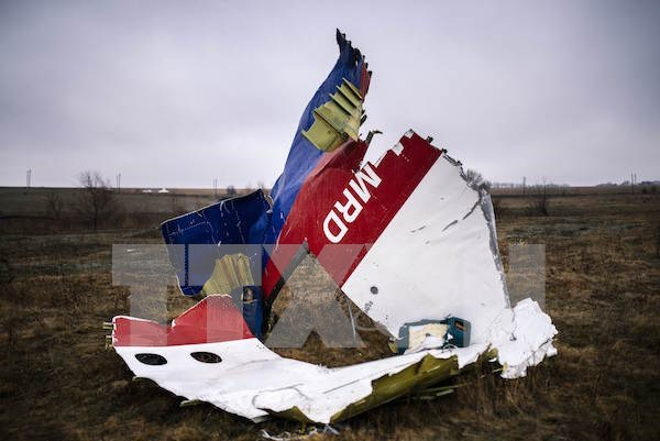 Malaysia vows to find out explanation for MH17 tragedy hinh anh 1