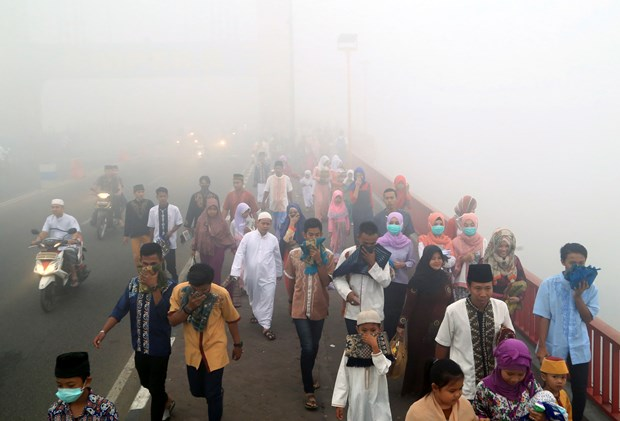 Indonesian fires pollute Malaysia's air hinh anh 1