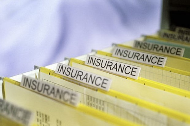 Vietnam to take solutions to sustainable insurance market hinh anh 1