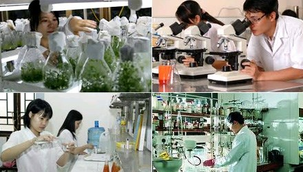 Quang Ninh prioritises science-technology development hinh anh 1