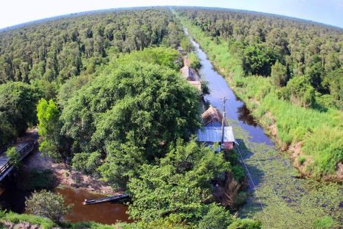 18mln USD plan adopted for U Minh Ha National Park preservation work hinh anh 1