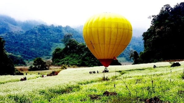 Moc Chau hosts int'l air balloon festival hinh anh 1