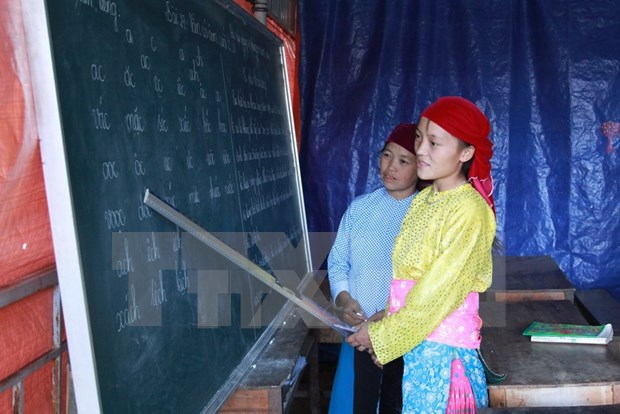 Vietnam's illiteracy eradication efforts come to fruition hinh anh 1