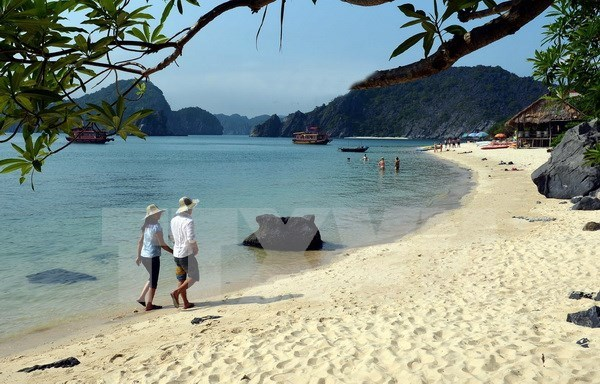 Dossier seeks recognition of Ha Long-Cat Ba as world natural heritage hinh anh 1