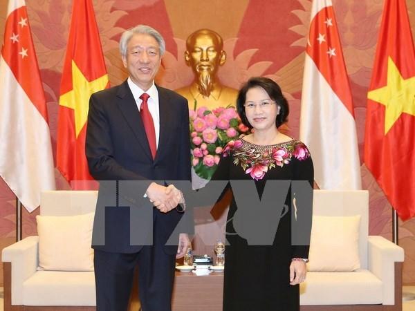 VSIP symbolises Vietnam-Singapore fruitful cooperation hinh anh 1