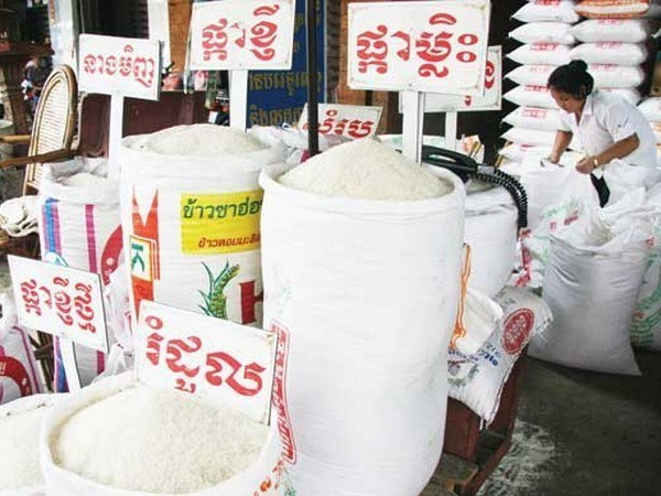 Cambodia announces special loan to stablise rice prices hinh anh 1
