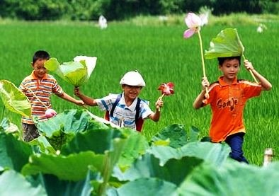 Children's love of the environment nurtured hinh anh 1