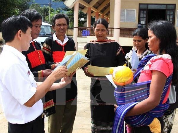Ethnics make up 14.6 percent of Vietnam's population: survey hinh anh 1