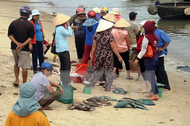 Compensation levels for Formosa damage in central provinces announced hinh anh 1