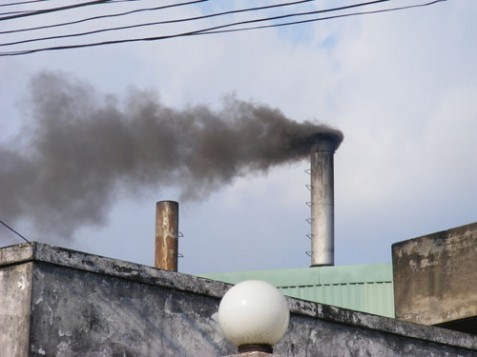 HCM City expels 21 polluting plants hinh anh 1