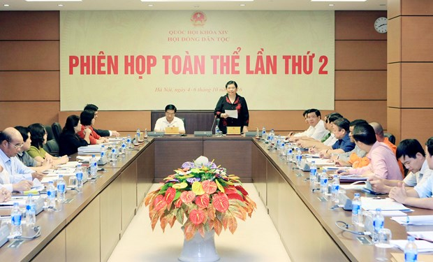 Some ethnics-targeted policies lack cohesiveness hinh anh 1