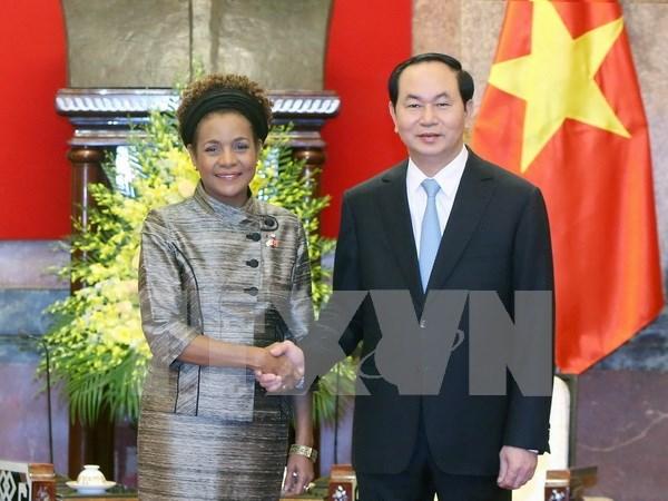 Vietnam wants Francophone community to strengthen economic ties hinh anh 1