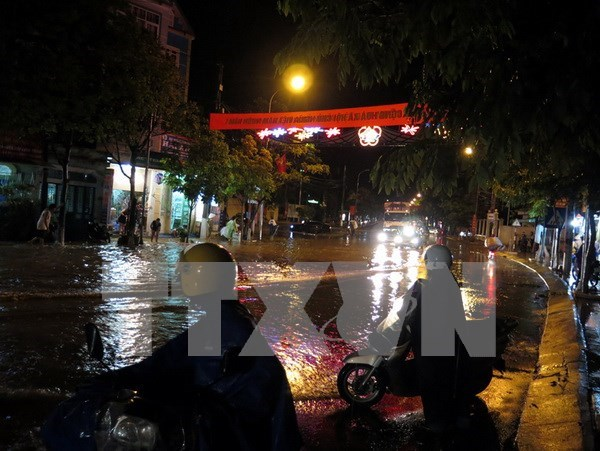 Whirlwinds uproot trees, collapse houses in central region hinh anh 1