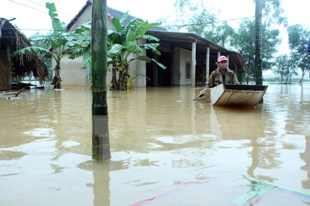Prompt actions made to cope with floods in central region hinh anh 1