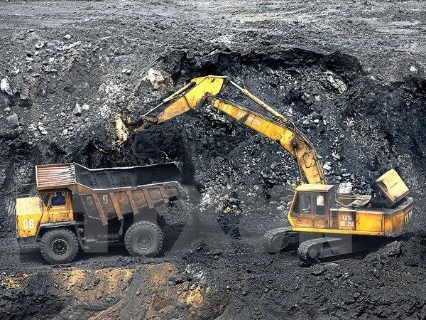 Coal import needed for economic growth, energy security: official hinh anh 1