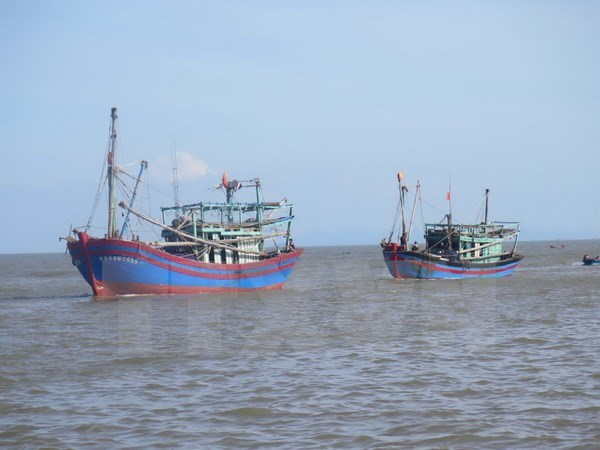 Thailand detains five Vietnamese fishing boats hinh anh 1
