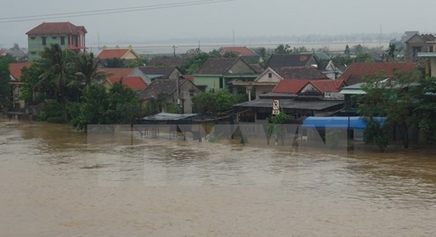 Workshop discusses ways to cope with storm surge hinh anh 1