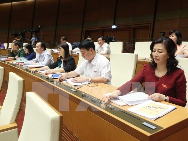 NA passes property auction law, discusses conditional business lines hinh anh 1