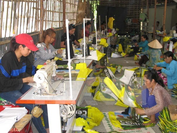 Experts suggest ways to develop rural workers' vocational skills hinh anh 1