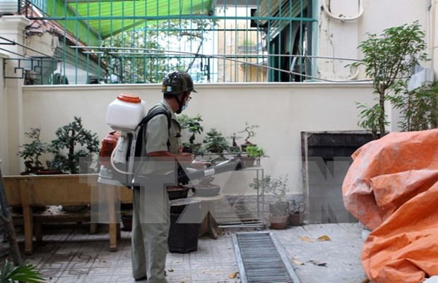 Zika on the rise in HCM City hinh anh 1