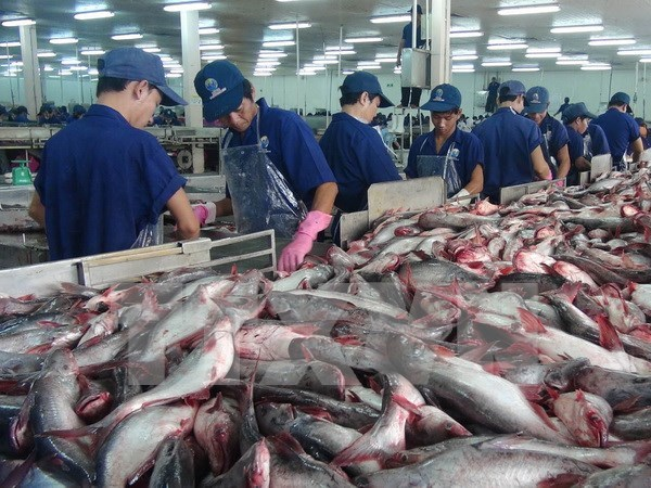 Russia – potential market for Vietnam's farm produce hinh anh 1