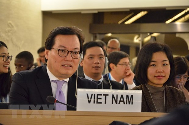Vietnam will work harder to ensure human rights: ambassador hinh anh 1