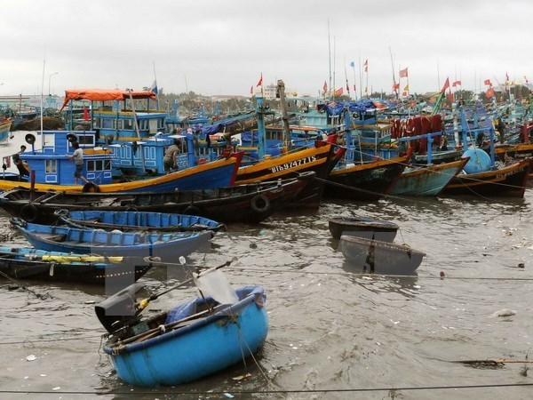 South-central coastal localities implement Law on Fisheries hinh anh 1