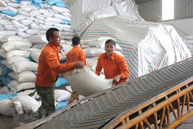 Vietnam's exports still grow over 8 pct despite global trade downturn hinh anh 1