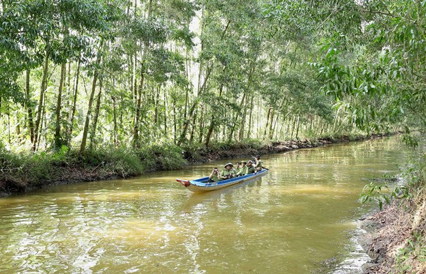 Ca Mau province works hard to tap into tourism potential hinh anh 4