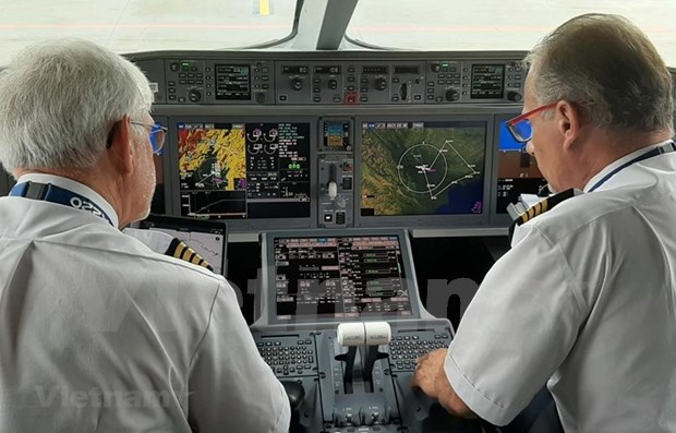 Aviation sector faces shortage of pilots, safety managers hinh anh 1