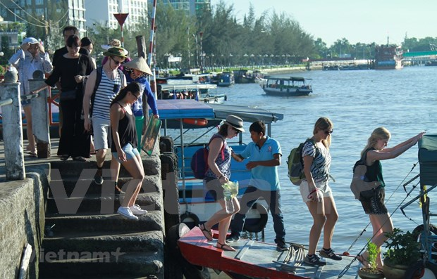 Tour guides get by in wake of COVID-19 hinh anh 1