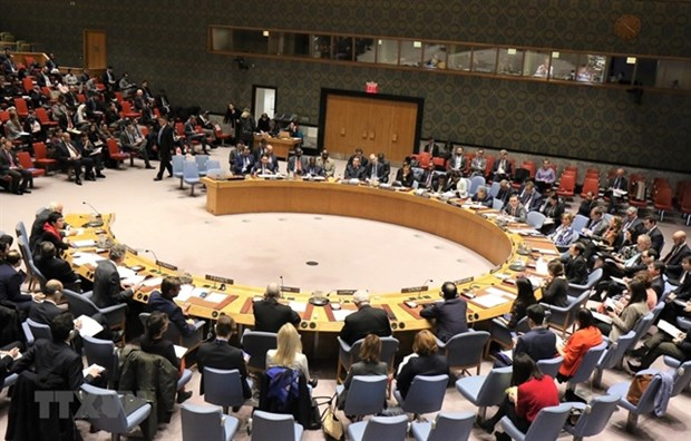 Vietnam affirms position through UNSC activities hinh anh 1