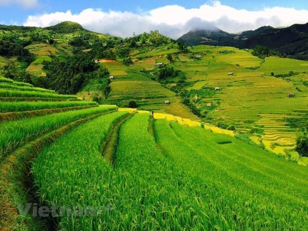Mu Cang Chai - stunning beauty in northwestern region hinh anh 1