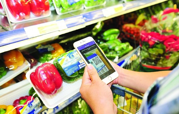 Digital economy predicted to reach 43 billion USD by 2025 hinh anh 1