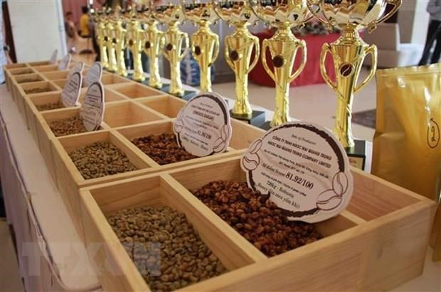 Domestic coffee exporters expect a promising year hinh anh 2