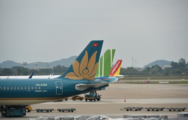 Vietnamese aviation market forecast to recover from mid-Q3 hinh anh 1
