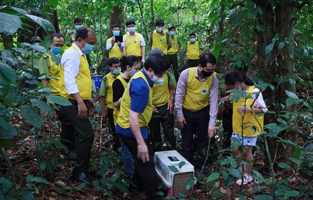 Wildlife release tour raises public awareness of nature conservation hinh anh 1