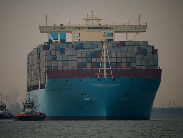 Foreign shipping lines increase fees amid COVID-19, Vietnamese firms face difficulties hinh anh 2