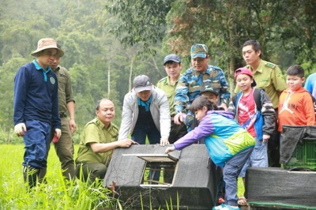 Wildlife release tour raises public awareness of nature conservation hinh anh 4