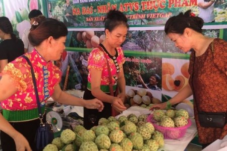 Trade development programme in remote, mountainous areas approved hinh anh 1