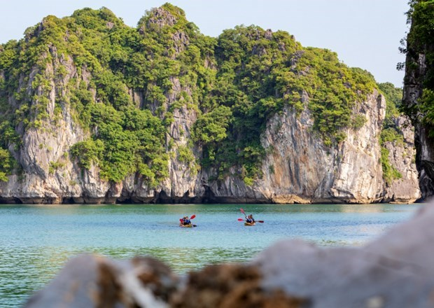 Digital transformation helps travel firms survive amid pandemic hinh anh 3