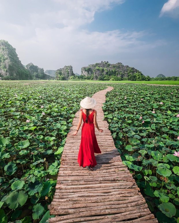 Ninh Binh's must-see destinations in Spring hinh anh 3
