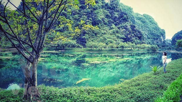 Ninh Binh's must-see destinations in Spring hinh anh 5