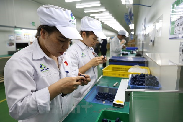 EVFTA opens up opportunities for investment, restructuring global value chains hinh anh 1