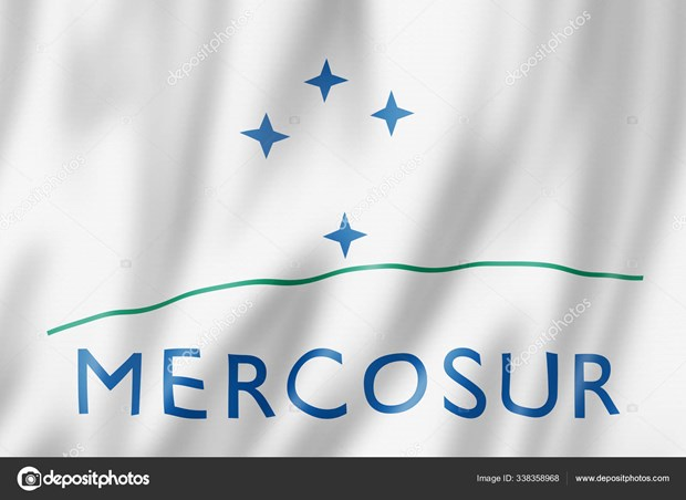 30 years of MERCOSUR: Tapping into potential of partnership with Vietnam ​ hinh anh 1