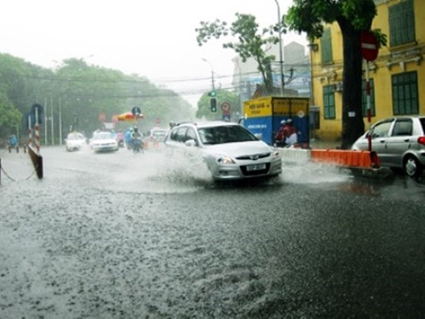 2019: untimely rain, less storms but abnormal hinh anh 1