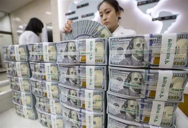 2018 monetary market: a year of success hinh anh 2