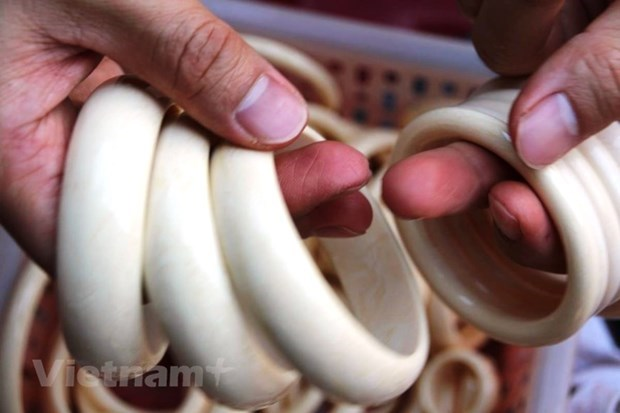 Illegal wildlife trade not decline in Vietnam, says PanNature report hinh anh 2