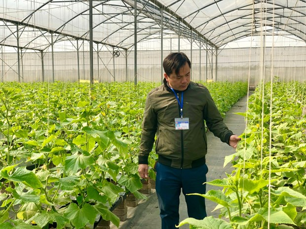 Personnel rotation in Bac Giang province bears fruit hinh anh 1